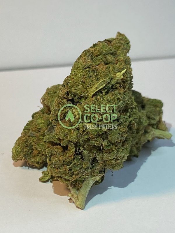 Gelatti | Weed Delivery in DC