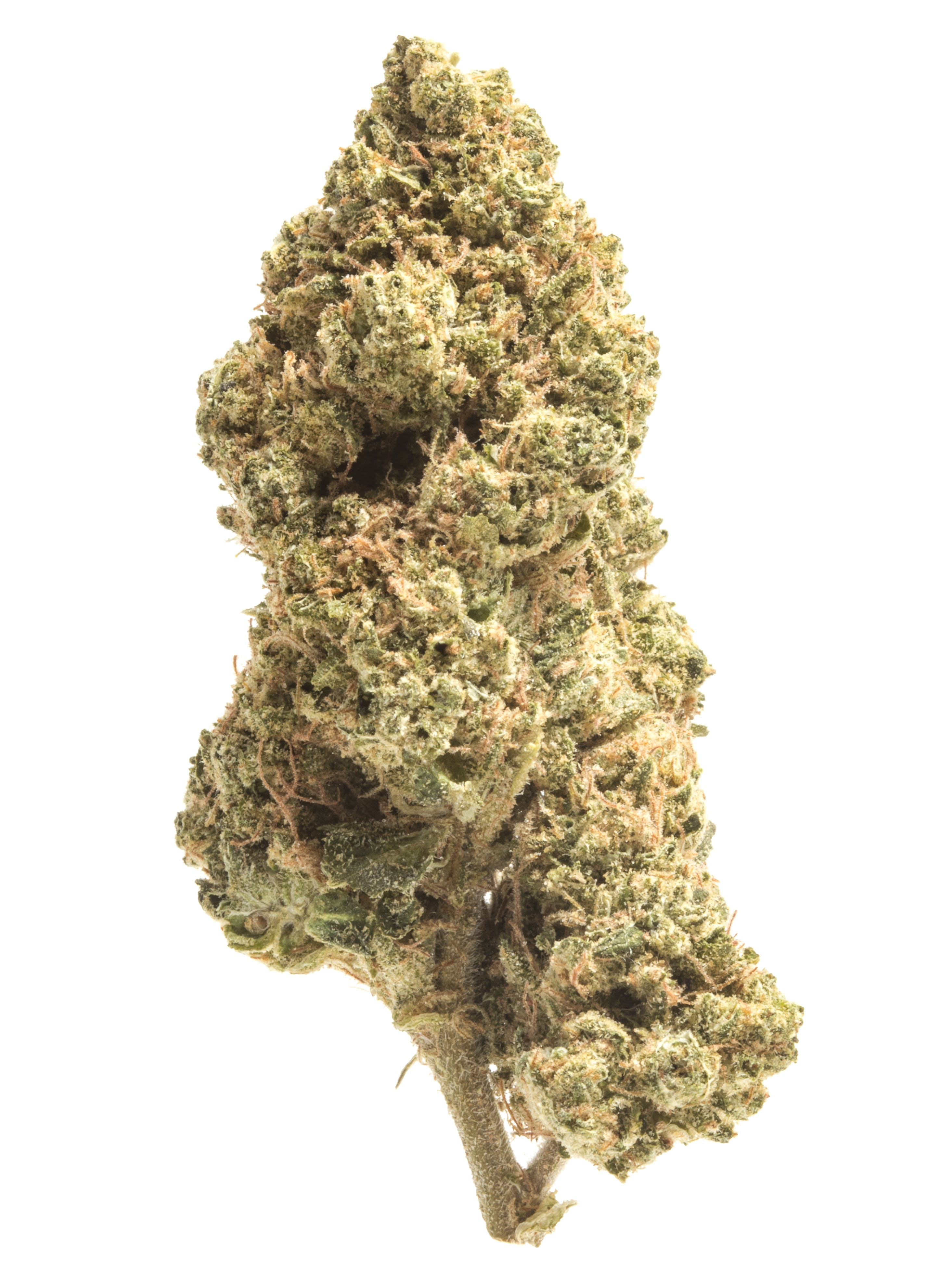 Lemon Kush Strain Review