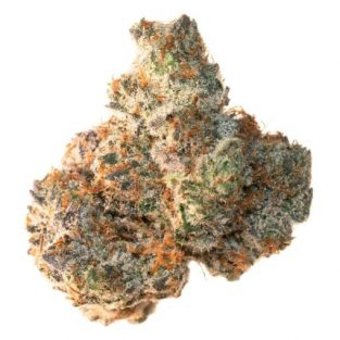 Animal Cookies | Select Co-Op