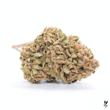 Cherry Chem | Select Co-Op